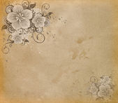Grunge paper with flowers. — Stock Photo