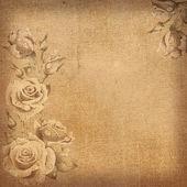 Vintage floral background. — Stock Photo