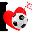 I love soccer ball — Stock Photo #10883151