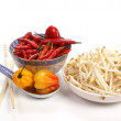 Stock Photo: Chinese food