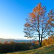 Autumn evening mountain landscape — Stock Photo