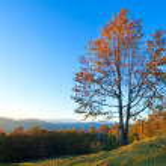 Autumn evening mountain landscape — Stock Photo