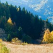 Stock Photo: Autumn mountain panoram(Carpathian, Ukraine).