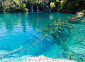 Clear lake and small waterfalls (Plitvice Lakes National Park, — Stock Photo