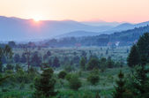 Sunset and summer country landscape — Stock Photo