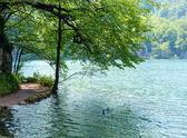 Summer waterfalls and lake (Plitvice, Croatia) — Stock Photo
