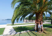 Summer park and family near palm tree (Montenegro) — Stock Photo