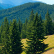 Stock Photo: Summer mountain landscape