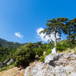 Summer Llogara pass (Albania) — Stock Photo