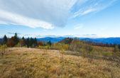 Paisagem de montanha outono manhã — Foto Stock