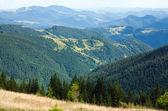 Paisagem de montanha de verão — Foto Stock