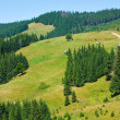 Summer mountain hamlet landscape - Stock Photo