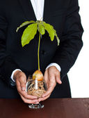 Environmental protection business — Stock Photo