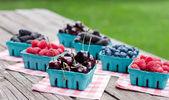 свежие ягоды — Стоковое фото