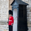 Stock Photo: England Queens' Guard .