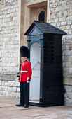 England Queens' Guard . — Stock Photo