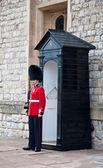 England Queens' Guard . — Stock Photo
