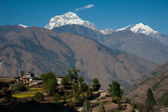 Beautiful view of green field, local house and Himalayan mountains when see during Poonhill peak trekking way, Nepal — Stock Photo