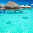 Water villas in the ocean with steps into lagoon — Stock Photo #11002989