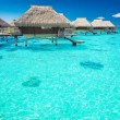 Water villas in the ocean with steps into lagoon — Stock Photo
