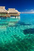 Vodní vily nad tropickými útesy — Stock fotografie