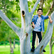 Boy standing on a branch on the tree — Stock Photo