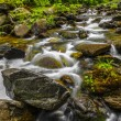 Picture mountain river flowing among stones — Stock Photo #10757651
