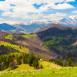 Landscape with mountains in the summer day — Stock Photo