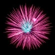Fireworks — Stock Photo #11742080