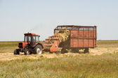 Haymaking time — Foto Stock