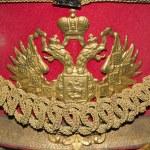 Çift başlı kartal, Rusya İmparatorluğu arması — Stok fotoğraf #11527665