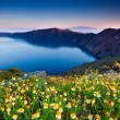 santorini spring — Stock Photo