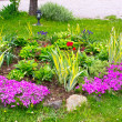 Stock Photo: Small garden