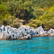 Stock Photo: Rocky and wooded shore with bush at foreground. Coast of Greek Islands
