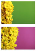 3d bel20 pulsante clicca qui blocchi di testo — Foto Stock