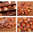 Chocolate and hazelnuts collage — Stock Photo