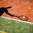 Shadow of a tennis player in action on a tennis court — Stock Photo #10957137