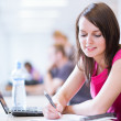 In the library - pretty female student with laptop and books — Stock Photo
