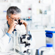 Senior male researcher carrying out scientific research in a lab — Stock Photo #10957250
