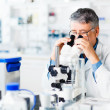 Senior male researcher carrying out scientific research in a lab — Stock Photo #10957268
