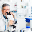 Senior male researcher carrying out scientific research in a lab — Stock Photo #10957271