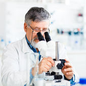 Senior male researcher carrying out scientific research in a lab — Stock Photo
