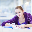 Female college student in a library (shallow DOF; color toned im — Stock Photo #11303021