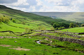 The Yorkshire dales landscape — Stock Photo