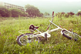 Bicycle on green meadow — Stock fotografie