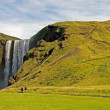 Skogarfoss waterfall in Iceland — Stockfoto
