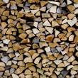 Woodpile are stacked from differen kind types — Stock Photo