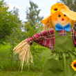 Colorful scarecrow is dressed in clothes — Stock Photo #12147800