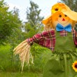 Stock Photo: Colorful scarecrow is dressed in clothes