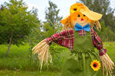 Colorful scarecrow is dressed in clothes — Stock Photo